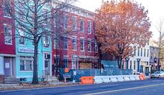 2017.11.26 Carter G. Woodson National Historic Site, Washington, DC USA 0899