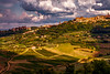 Only that One (BeNowMeHere) Tags: ifttt 500px sky landscape sunset travel clouds hill trip scenics dramatic scenic moody horizon over land nature green italy village wine tuscany montepulciano vineyards benowmehere dreamvillage onlythatone