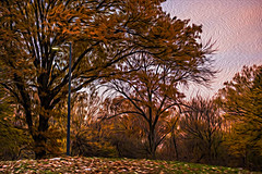 1341_0481FLOP (davidben33) Tags: newyork central park street streetphotos people nature trees bushes leaves colors green yellow blue sky cloud lake portraits women girl cityscape landscape autumn fall 2017 beauty