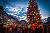 Marché de Noël de Strasbourg (thierrybalint) Tags: nikoniste sapin noël décoration guirlandes strasbourg