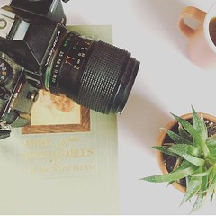 (makaraaikens) Tags: redhead anneofgreengables canada novascotia britain british tea natural nature cameras everything tumblr white vintage old wedding pastel green anything cacti cactus camera