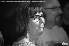 2017 Bosuil-Het publiek tijdens het optreden van Popa Chubby 30-ZW