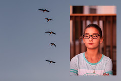 (Rebecca812) Tags: girl autumn sunset geese sky dreams art collage stfrancis animals love eyeglasses preadolescent childhood fly wildlife
