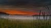 Misty meadow 2 (piotrekfil) Tags: nature landscape sunset dusk twilight fog mist sky cloud poland pentax aoi elitegalleryaoi bestcapturesaoi aoi3levels