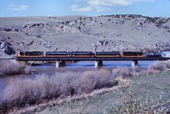 BN   Logan, MT (larryzeutschel) Tags: bn np montana railroad