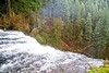 Top of Silver Falls (ZnE's Dad) Tags: silverfallsor waterfall oregon pnw cascadia cascades