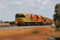18 November 2017 P2505 P2509 P2515 loaded 7725 iron ore Tilley Junction (RailWA) Tags: railwa philmelling aurizon midwest p2505 p2509 p2515 loaded 7725 iron ore tilley junction
