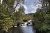 Cascade Falls, Cradle Mountain National Park (Daniel J. Mueller) Tags: cascadefalls cascade falls waterfall stream water tree trees forest cradlemountain national sky clouds enchanted walk park