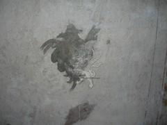 La latrina Romana di via Garibaldi _27