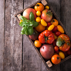 Colorful tomatoes, red , yellow, orange , green,black tomatoes. autumn background. vintage wooden background (cristina perciuleac) Tags: background food pattern fruit summer texture nature kitchen tomato green fresh healthy red closeup farming garden harvest market orange organic ripe vegetable vegetarian wood yellow autumn bright color fall farm farmer gardening group heirloom ingredient open plum small variety vibrant vine yield basket cherry cut life macro pasta pear