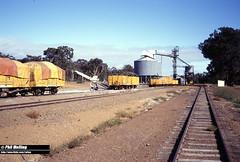 2948 Qualeup 12 April 1982 (RailWA) Tags: qualeup railwa philmelling westrail 1982