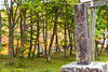 DSC_3104 (Timmy Tsai) Tags: autumnleaves brook canyon colors japan miyagiken narukyogorge otaniriver tourism trail train autumn mountain photography season tree 大谷川 季節 宮城縣 山 峽谷 攝影 旅遊 日本 樹 步道 溪水 火車 秋天 紅葉 顏色 鳴子峽