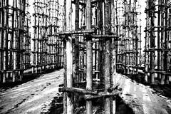 Protections (drugodragodiego) Tags: giulianomauri art artland landart sculpture wood trees lodi lombardia italy blackandwhite blackwhite biancoenero bw pentax pentaxdfa2470mmf28 hdpentaxdfa2470mmf28edsdmwr pentaxiani