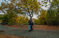 1338__0592FLOP (davidben33) Tags: brooklyn 718 ny quotnew yorkquot quotprospect parkquot autumn 2017 fall trees bushes leaves lake pets gooses ducks water sky clouds colors yellow green blue people quotstreet photosquot