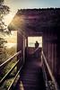 End of summer (Stephan Harmes) Tags: summer autumn railing woodtree travel sunset sundown tree building wooden sky sea mecklenburgische seenplatte girl