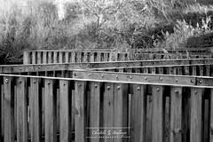 Z zigzag au Parc de la Falaise à Le Portel - de Christèle Boulanger