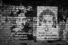 _DSC6327 (joshlphotography) Tags: lennon einstein quote street graffiti streetart bw