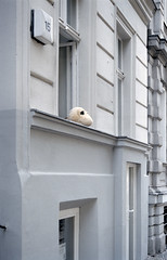 Untitled (Florian Thein) Tags: berlin kreuzberg fassade fenster facade window kuscheltier stuffedanimal fensterblick windowview beobachten observe lächeln smile film analog kleinbild 35mm canonf1 kodakportra