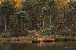 Autumn islands!