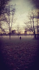 The Creep (DrQ_Emilian) Tags: creepy creep scary afraid mist misty fog foggy nature outdoors park person fall autumn mood sunset dawn sky clouds trees dark light colors maxeythsee stuttgart germany badenwürtemberg europe travel