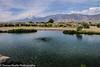 Owens Valley-19 (Denise Noelle Photography) Tags: owensriver bishopca sierranevadamountains monolake lonepine junelake mammothlakes