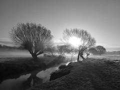 Beverley Brook (Gilder Kate) Tags: richmond richmondpark richmonduponthames roehampton beverleybrook mist misty frost frosty morning panasoniclumixdmctz70 panasoniclumix panasonic lumix dmctz70 tz70