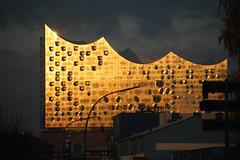 Golden palace (Elbmaedchen) Tags: elbphilharmonie hamburg hamburgerhafen opera goldenestunde gegenlicht sonnenuntergang reflektion reflection