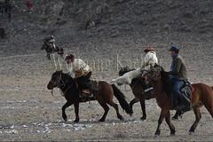 30101786 (wolfgangkaehler) Tags: 2017 asia asian centralasia mongolia mongolian westernmongolia ulgii ölgii bayanulgiiprovince altaimountains altaymountains altaymts goldeneaglefestival people person kazakh competing competition competitor game games horse horseriding horseback horsebackriding horsebackrider traditionalgame kukhbar fighting goatskin kokpar