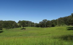 574 Irvines Road, Newee Creek NSW