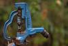 YardHydrant (jmishefske) Tags: yard october 2017 nikon hydrant d500 diverter wisconsin backflow woodford spout preventer water