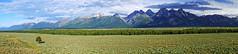 Panoramic veiw of Teton range, Wyoming, USA (Andrey Sulitskiy) Tags: usa wyoming grandteton