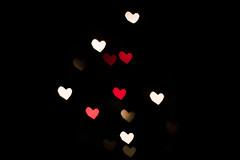 Musso_Valentina_507#5