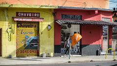 05dezembro-7 (Laércio Souza) Tags: laerciosouza saopaulo brasil brazil casasantigas saopauloantigo cachorro dog trabalhadores construcaocivil belem