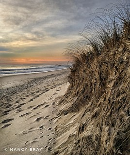 A tentative sunrise at Nauset Beach last week.