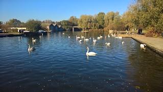 13/13 06-11-2017 Wroxham & Hoveton, England