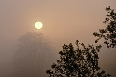 Morgennebel (uschmidt2283) Tags: a7r architektur fachwerke landschaften langzeitbelichtung lichtoutdoor nachtaufnahmen natur städte