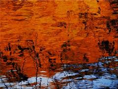 Autumn reflections on the water (Ostseetroll) Tags: deu deutschland geo:lat=5418553400 geo:lon=1064596892 geotagged kirchnüchel schleswigholstein ukleisee herbst herbstfarben autumn autumncolours spiegelungen reflections see lake