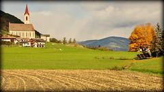 Season of change (Feldthurns, Italy) (armxesde) Tags: pentax ricoh k3 italien italy südtirol altoadige herbst autumn fall berg mountain alps alpen dolomiten dolomites tree baum feldthurns velturno
