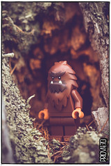 Home sweet home! (Priovit70) Tags: lego minifigures bigfoot themcfoots wood tree macro olympuspenepl7