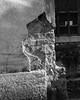 DSCF1077 (agianelo) Tags: bw monochrome concrete cracked worn texture abstract blackandwhite