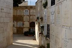 DSC_2918 (Andrea Casarino) Tags: terrasanta israele gerusalemme betlemme nazareth padrifrancescani sanfrancesco muro religione
