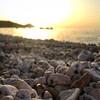 Buongiorno dalla spiaggia di #sottobomba a #portoferraio #elba nello scatto di @saralagomanzini. Continuate a taggare la vostre foto con #isoladelbaapp il tag delle vostre vacanze all'#isoladelba. Visita http://ift.tt/1NHxzN3 (isoladelbaapp) Tags: instagram isoladelba elba