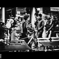 #BIKE2THEKISS #Santarcangelo di Romagna IMG_1068 Viabici BIS (Viabici(c) di StefanoM) Tags: viabici bike2 bicicletta bici bike bicycle cykel fahrrad street city mono bw streetphotography chiaroscuro blackandwhite italia santarcangelo di romagna