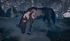 Buddy (Jenna Jay ( jjdomzarjs )) Tags: horse brown white snow winter sl secondlife slphotography slart jjdomzarjs feeding stallion