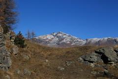 Arolla (bulbocode909) Tags: valais suisse arolla valdhérens montagnes nature arbres automne paysages neige bleu vert rochers
