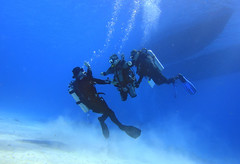 quadruple amputee man takes diving course 11 (KnyazevDA) Tags: disability disabled diver diving deptherapy undersea padi underwater owd redsea buddy handicapped aowd egypt sea wheelchair travel amputee paraplegia paraplegic