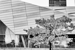 Modern Angles (maureen.elliott) Tags: blackandwhite blackandwhitephoto architecture modern highkey patterns urban city toronto ripleysaquarium structure street citystreet building angles 7dwf