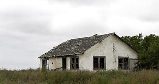 Broken House in a Field of Dead Sunflowers