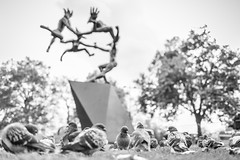 20171119_F0001: Naked dancers and birds: Danse Gwenedour at Marble Arch (wfxue) Tags: london street art sculpture dancing masks dansegwenedour marblearch pigeons birds lawn trees blackandwhite bw bnw monochrome