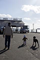 Dog walking (quinn.anya) Tags: paul toddler dog poodle coaster dogwalking tom dziadzi edgartown marthasvineyard